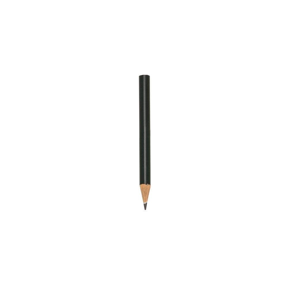 Mini Lápis Ecológico